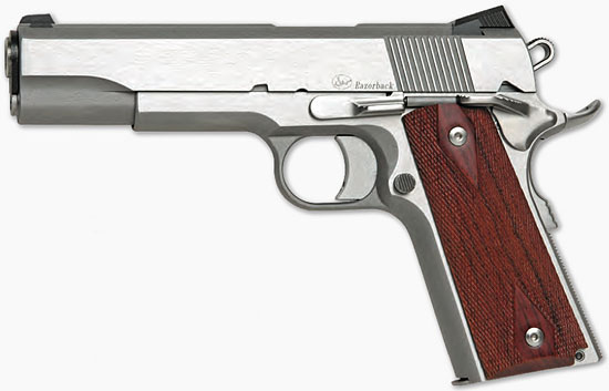 Dan Wesson Razorback 10mm
