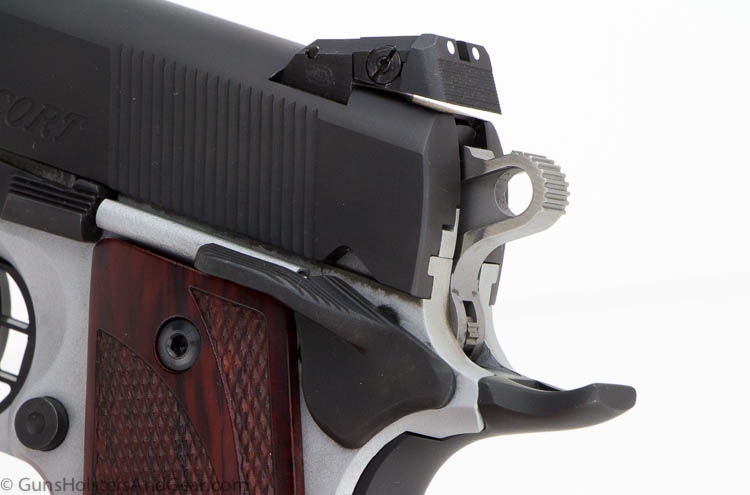 rear sight and thumb safety